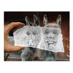 Lápiz contra la cámara - burros locos tarjetas postales
