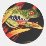Lápiz observado rojo 1991 del color de la rana de etiquetas redondas