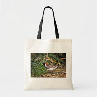 Lapland Longspur Budget Tote Bag