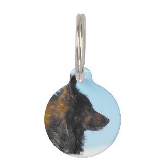 Lapphund finlandés lindo placas para mascotas
