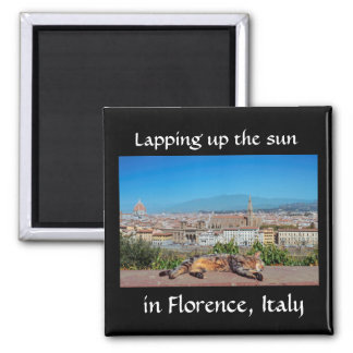 Lapping up the sun in Florence, Italy magnet