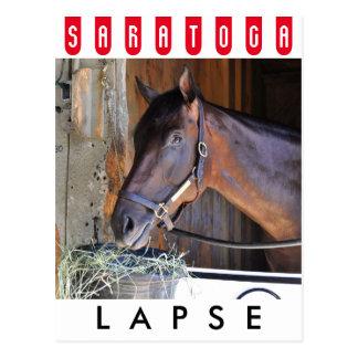 Lapse by Blame Postcard