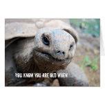 Lapso de la memoria de la tortuga gigante tarjeta