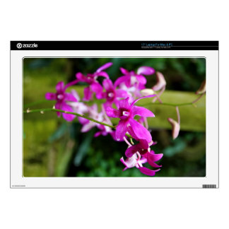 Laptop Skin - Cooktown Orchid