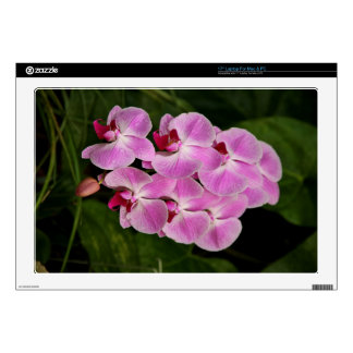 Laptop Skin - Orchid