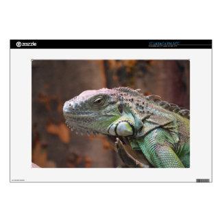 Laptop skin with colourful Iguana lizard