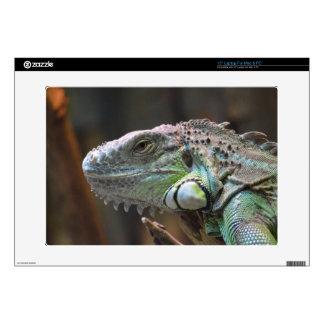 Laptop skin with head of colourful Iguana lizard