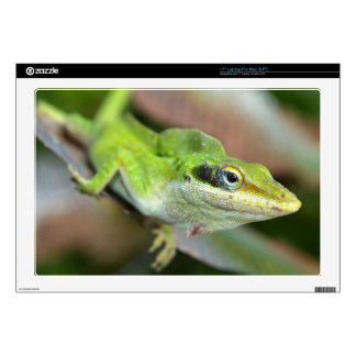 Laptop Skins - Bright Green Lizard