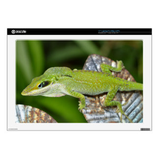 Laptop Skins - Bright Green Lizard No. 2
