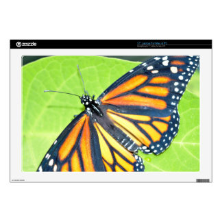 Laptop Skins - Butterfly close up 3