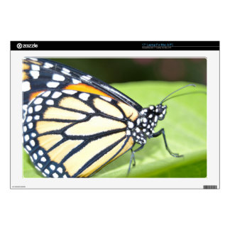 Laptop Skins - Butterfly close up 5