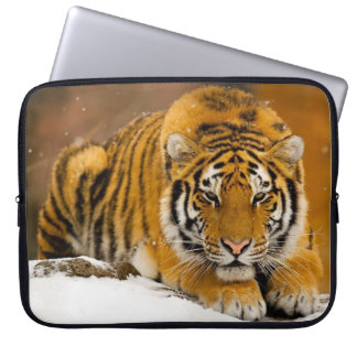 Laptop sleeve with tiger