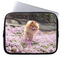 Laptop Sleeves | Pomeranian Pink Flowers 2