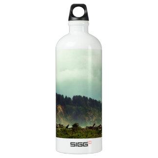 LaPush, Washington Aluminum Water Bottle
