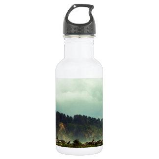 LaPush, Washington Botella De Agua De Acero Inoxidable