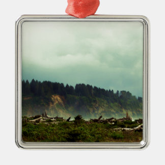 LaPush, Washington Metal Ornament