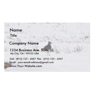 Lapwing Animal Double-Sided Standard Business Cards (Pack Of 100)