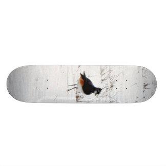 Lapwing Animal Custom Skateboard