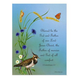 Lapwing Bird Meadow Watercolor Butterfly Postcard