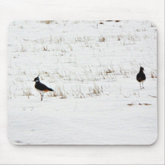 Lapwings Mouse Pads
