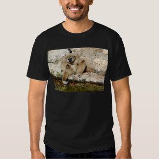 Lar gibbon near pond shirt