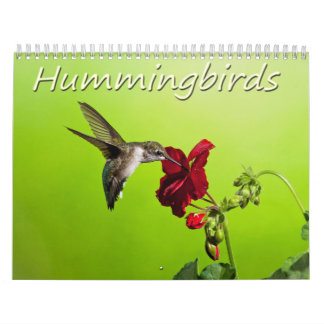 Lara Ellis Photography Hummingbirds Calendar