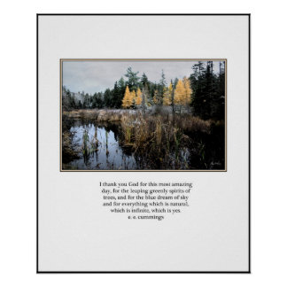 Larch Bog Poster, ee cummings quote Poster