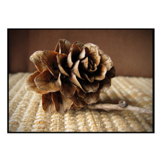 Larch Cone ATC Business Card Template