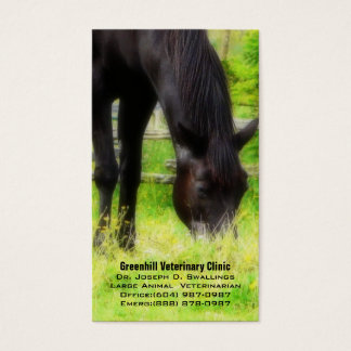Large Animal (Horse) Veterinarian Business Clinic Business Card