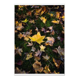 "Large Autumn Leaf on Grass - 3.5"" x 5"" Card"