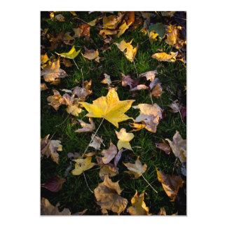 Large Autumn Leaf on Grass - 5x7 Card
