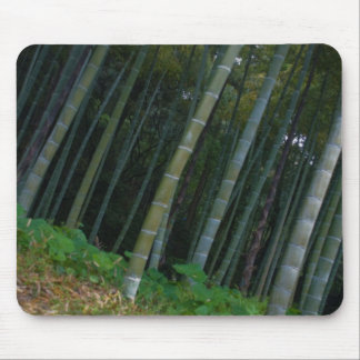 Large Bamboo Patch in Kyoto, Japan Mouse Pad