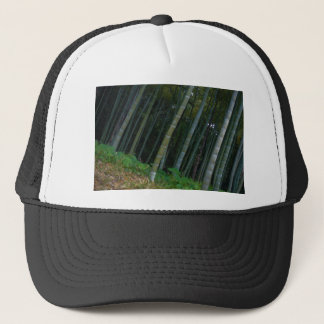 Large Bamboo Patch in Kyoto, Japan Trucker Hat