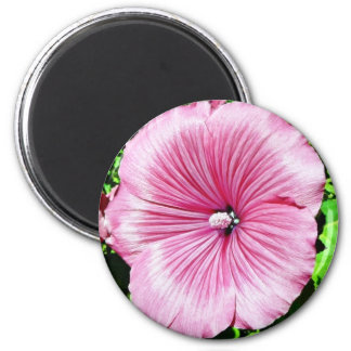 Large Beautiful Flower 2 Inch Round Magnet