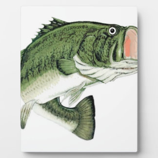 Large Big Mouth Bass Plaque