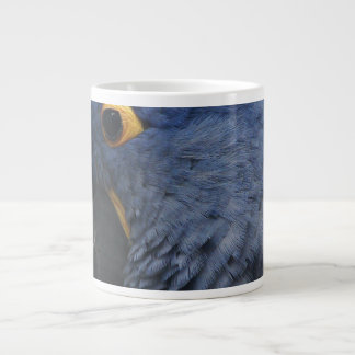 Large blue macaw on large coffee mug