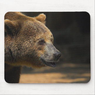 Large Brown Bear Mouse Pad