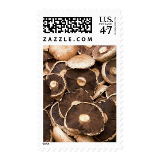 Large, Brown, Fresh, Edible Mushrooms Postage