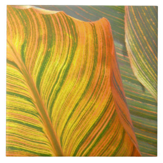 "LARGE CERAMIC TILE/TRIVET, ""CANNA LEAVES"" (PHOTOG. TILE"
