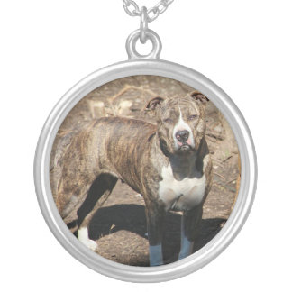Large collar silver plated necklace