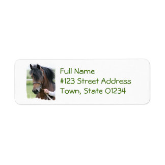 Large Draft Horse Mailing Labels