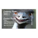Large Emu Business Cards