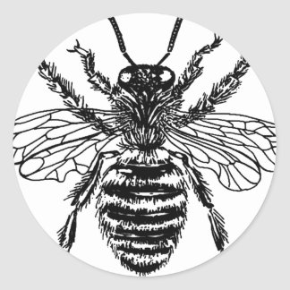 Large Fat Bee Art Nice happy bee vintage Classic Round Sticker