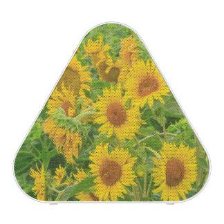 Large field of sunflowers near Moses Lake, WA 2 Speaker