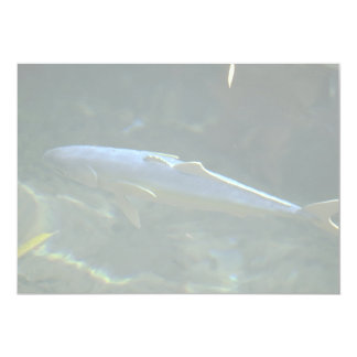 Large fish at Sea Life Park, Oahu, Hawaii, U.S.A. 5x7 Paper Invitation Card