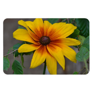 Large Flower Magnet
