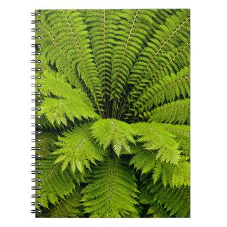 Large Green Fern Spiral Note Book