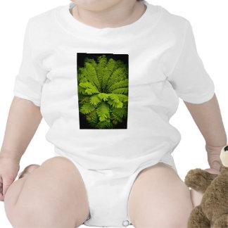 Large Green Fern Baby Bodysuit