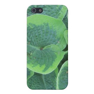 Large Green Hosta Leaves Iphone Case