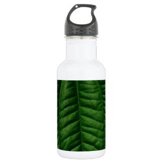 Large Green Leaf Water Bottle
